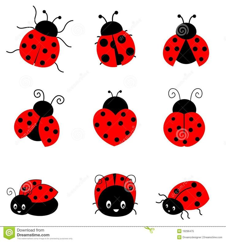 ladybug vector hawaii tattoo - photo #14