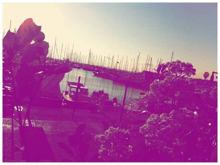 flowers sun&sea, Fenerbahce