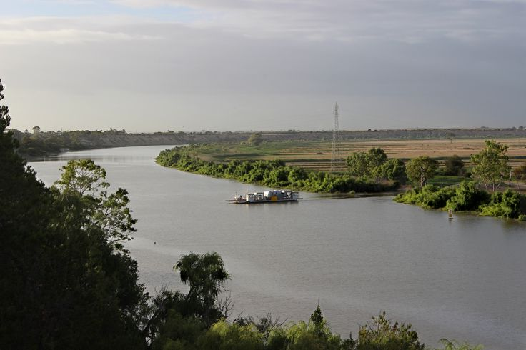 Murray River. Taken at 5:00pm on 18/12/2014 at Tailem Bend. Used landscape. Edited