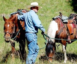Polokwane - Horse Riding @ Polokwane Game Reserve