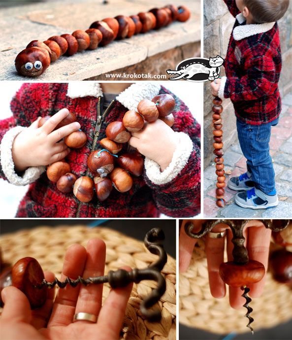 Let's make a caterpillar from chestnuts