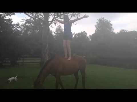 """Why Australians Love Xero. Check out the link in the YouTube video comments to find out why I am standing on my horse yelling """"The Great Outdoors"""""""