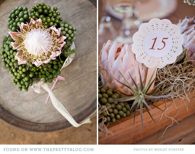 Air plant and Protea centrepieces