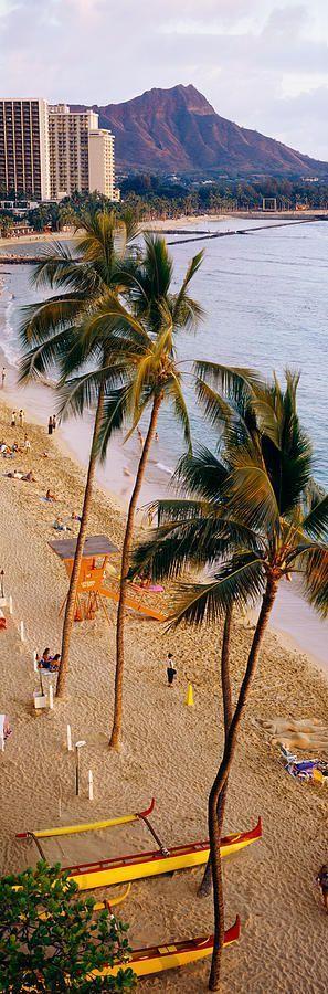 Waikiki Beach, Honolulu, Oahu, Hawaii, USA                                                                                                                                                                                 More