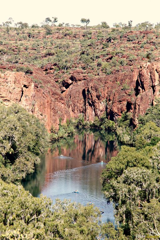 View of Lawn Hill Creek in Outback #Queensland
