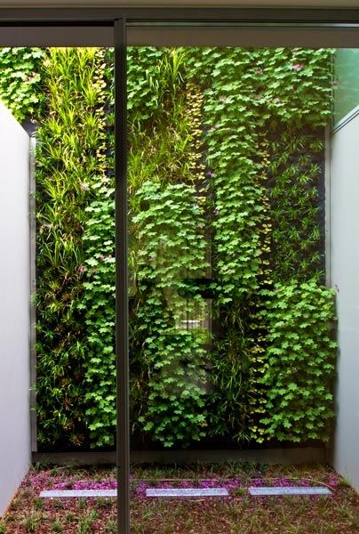 ♂ Green living wall Three exteriors vertical gardens in a Portuguese villa.