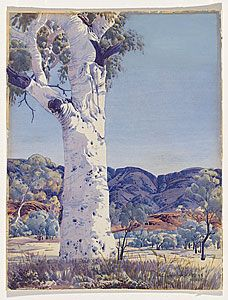 Ghost gum, Albert NAMATJIRA. Arrarnta people.Namatjira, an Arrernte man, was born on 28th July 1902 near Ntaria (site of the Hermannsburg Mission, about 120 kilometres from Alice Springs). Visiting artist Rex Battarbee first taught him the technique of watercolour painting. In 1936 Battarbee took Namatjira on an eight-week painting tour, giving him the only tuition he was to receive. cs.nga.gov.au
