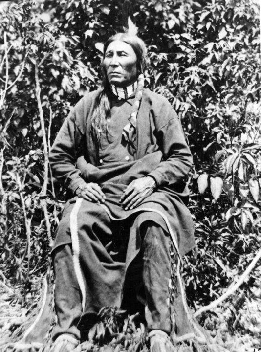 QUICK BEAR , 1876