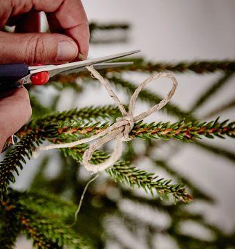 Záber na uväzovanie mašle zo špagátu na vianočnom stromčeku.