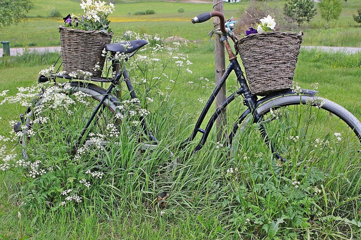 Bild från blogg,, http://roomofkarma.se/2012/06/svenska-landet-nar-det-ar-som-bast.html