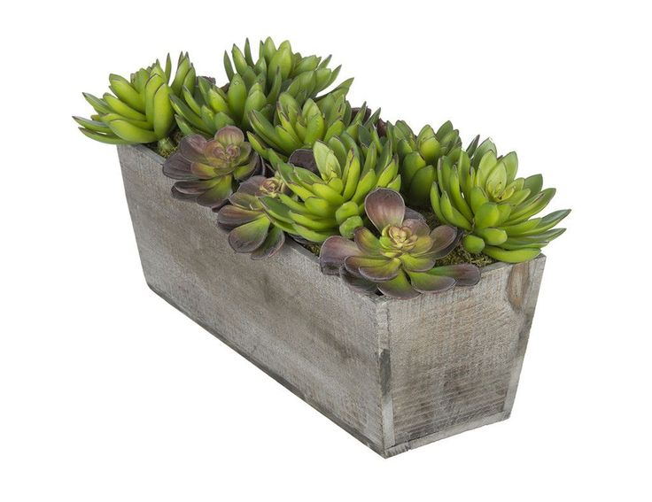 Artificial Succulent Garden Desk Top Plant In Decorative