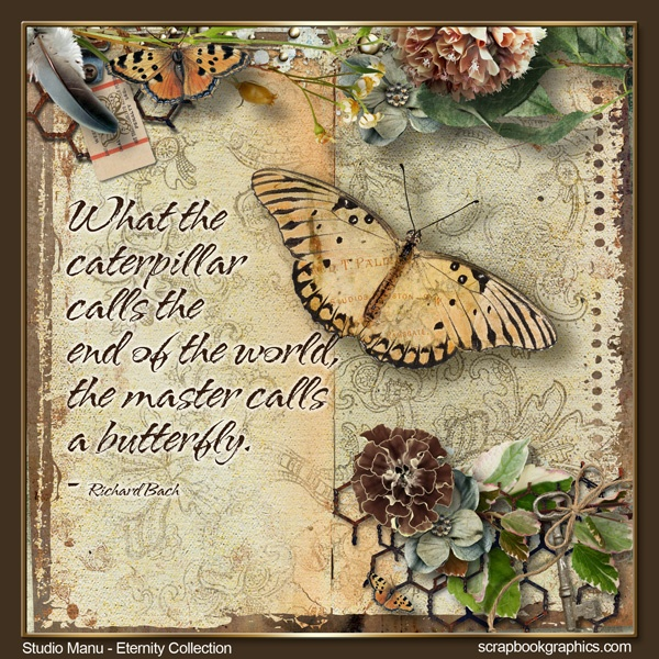 The caterpillar and the butterfly....  Post Quote Note by ScrapbookgraphicsQuotes Note, Quotable Quotes, Post Quotes, Note Quotes