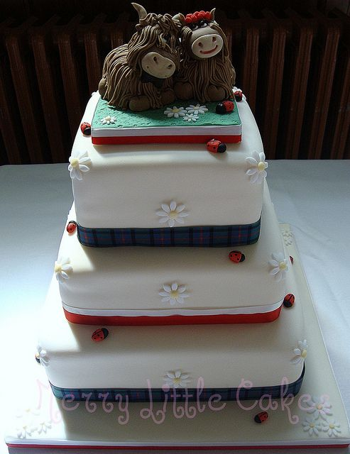 wedding cakes inverness scotland 17 best images about scottish highland cattle creative 24796