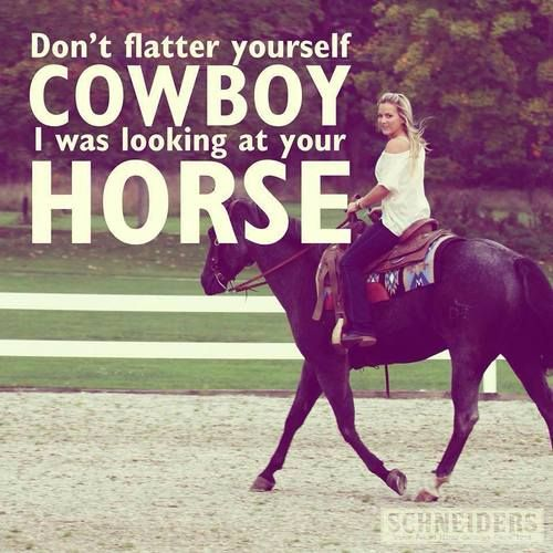 Don't flatter yourself cowboy I was lookin at your horse!