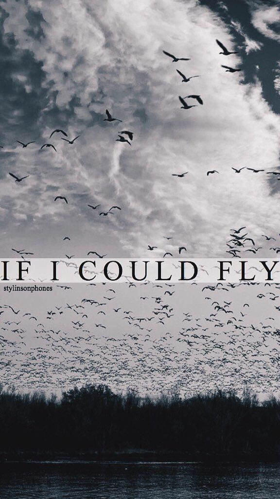 If I Could Fly | ctto: @stylinsonphones