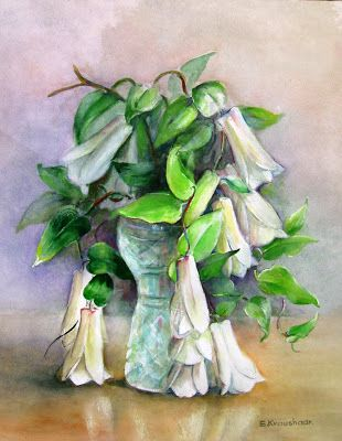 Flores del Sur de Chile: Copihues blancos