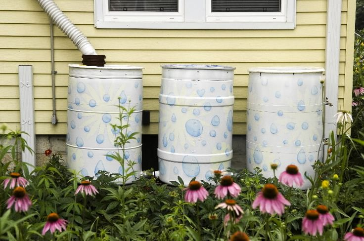 (link) painted rain barrels ~ Did you know that a 1000 square foot roof, with just 1/2 inch of rain, can provide you with 300 HUNDRED gallons of water?  ~~~ NOTE: Krylon Fusion for Plastic® Rust-oleum or Valspar plastic primer ~ are some of the best products to use when spray painting plastic.