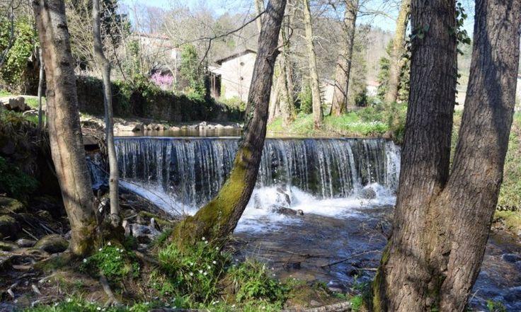 cascade à Sauxillanges, Parc Naturel Régional du Livradois-Forez