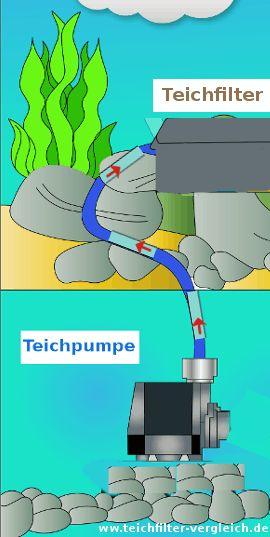 Teichpumpe verbunden mit Teichfilter