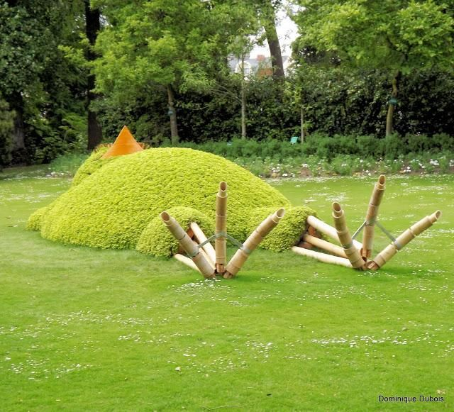 1000 images about nantes on pinterest nantes natale for Jardin des plantes nantes
