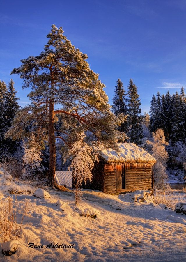 The Cabin (Norway) by Rune Askeland / 500px