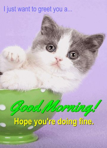 A Morning Greeting...