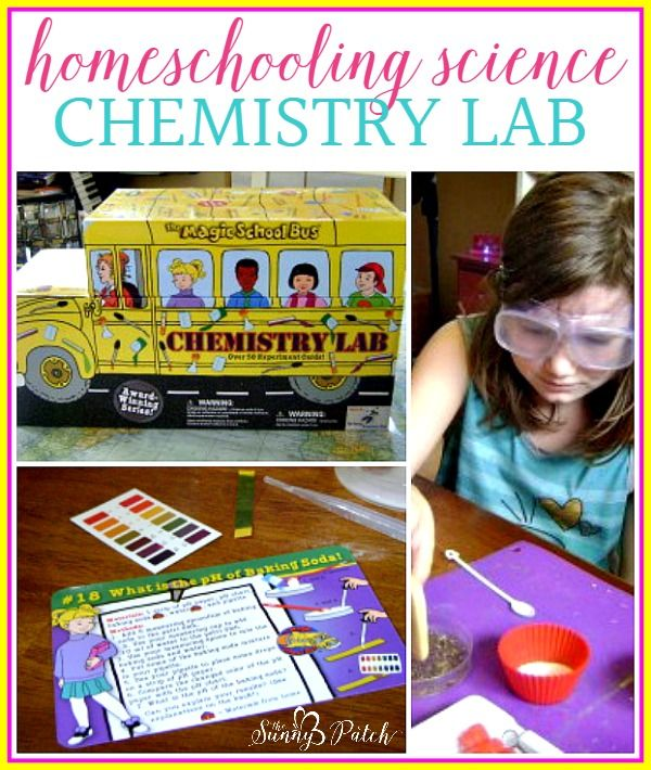 It's easy to create your own homeschooling science lesson plans. Take a look at how we studied chemistry with the Magic School Bus (with free printables) and our homeschooling lesson plans.