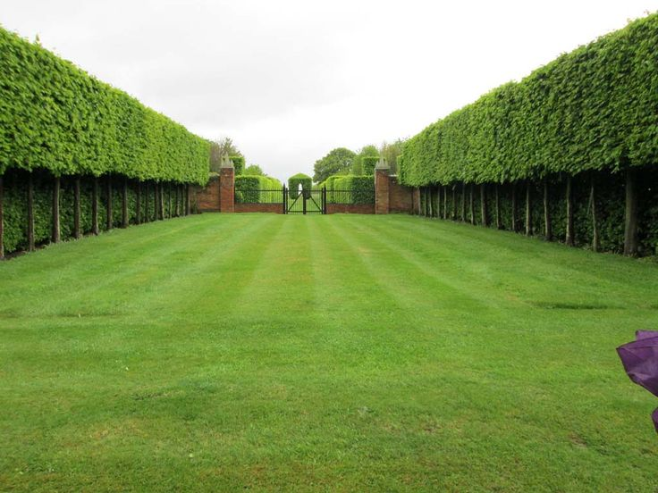 david hicks / the grove, oxfordshire