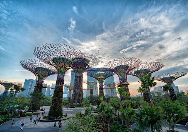 Gardens by the Bay - Singapore.