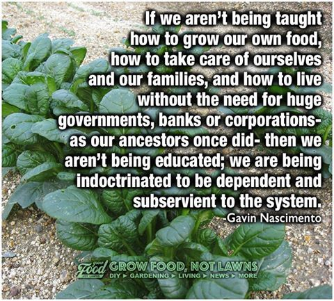 Image result for if schools are not teaching you to grow a garden it is indoctrination