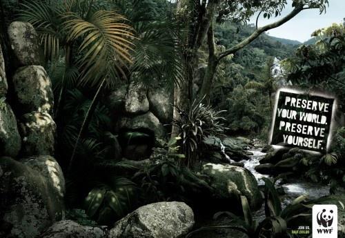 WWF5.jpg