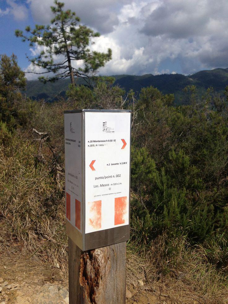 https://flic.kr/p/hwRvZY | IMG_2081 | Sentiero Levanto-Monterosso