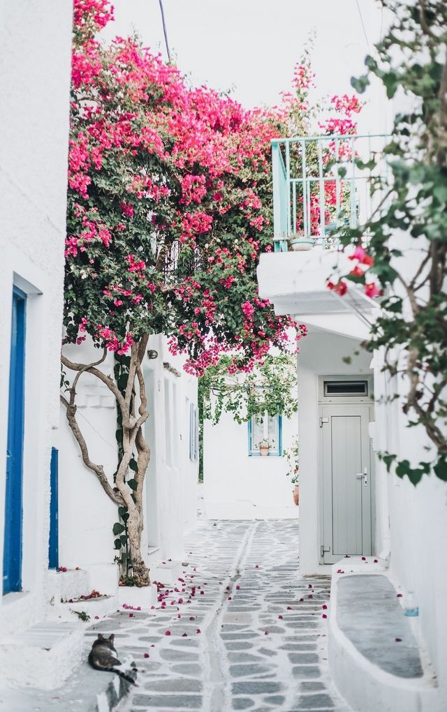 DAYS OF CAMILLE: TRIP IN GREECE : LES CYCLADES - PAROS #1…