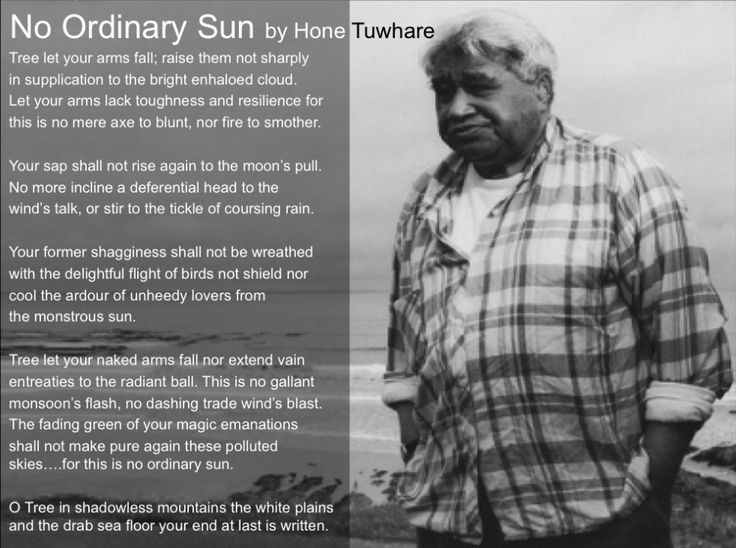 drunk by hone tuwhare Hey i'm stuck on the poetry essay i need help on writing about my two poems: no ordinary sun and drunk by hone tuwhare i mean it's hard for me to find out more about these poems.