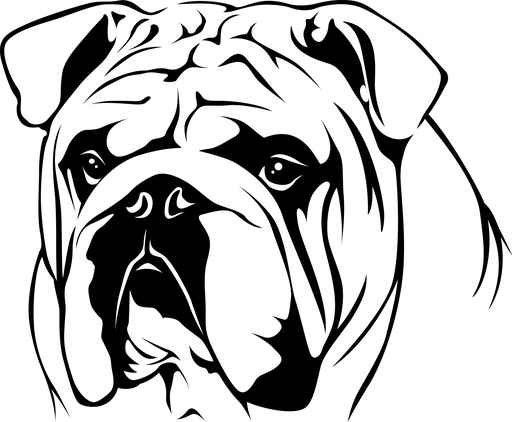 english bulldog line drawing - Google Search