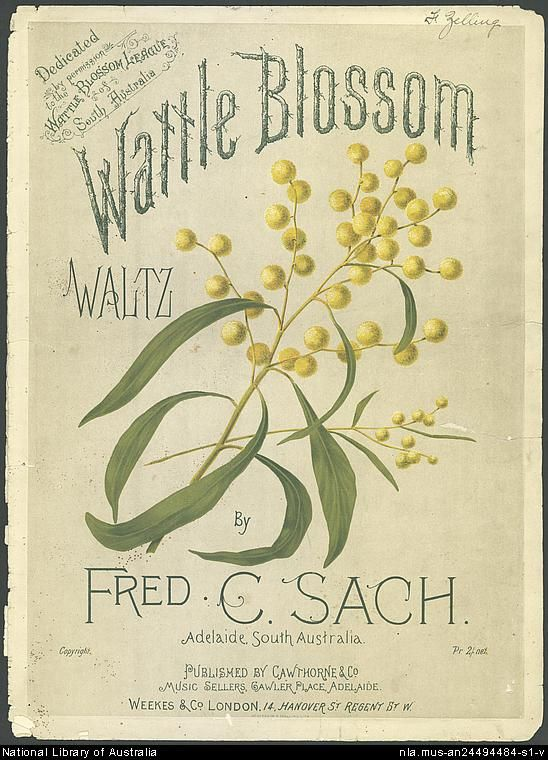 Sach, Fred C. Wattle blossom waltz [music] - Front Cover
