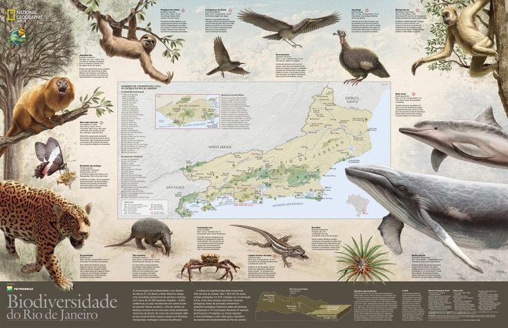 Biodiversidade no estado do Rio de Janeiro