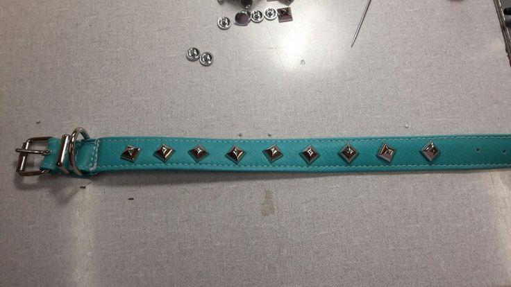 Collarino ecopelle Tiffany con borchie # borchie # Tiffany # collarino #cane #dog  #ecopelle