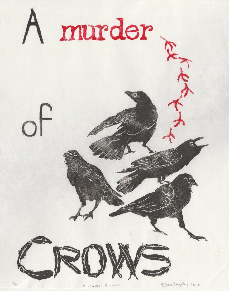 New to minouette on Etsy: A Murder of Crows Linocut Terms of Venery Collective Nouns for Birds Lino Block Print Collection A Murder of Crows (30.00 USD)