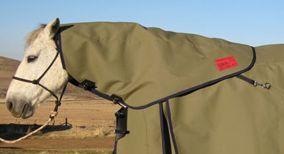 loco detachable contour cut neck rug