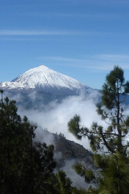 Parque Nacional del Teide, Tenerife, Spain`if This looks so surreal...beautiful!