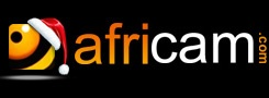 Africam offers live African safari webcams, 24/7. You'll have to watch an advertisement, but once you have, you'll get a high-quality video with sound.