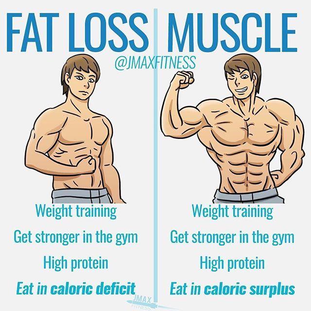 pierdere în greutate rep range)