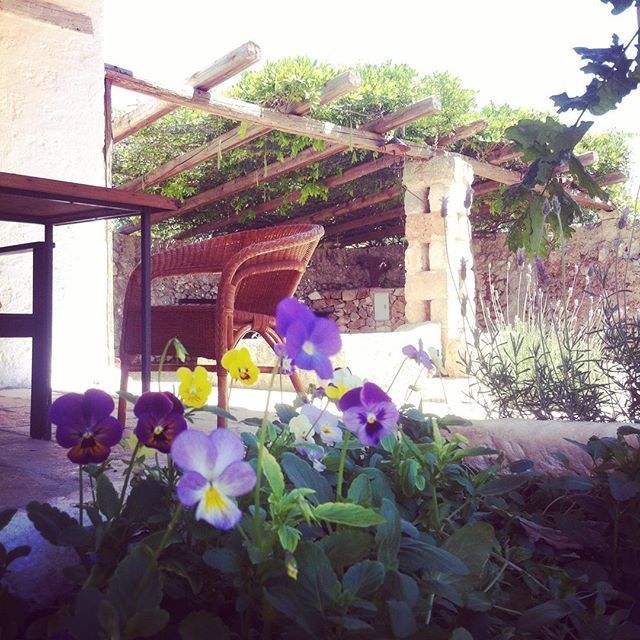 #loungetime in #bellolio #masseriapuglia #bio #biosteria #salento #carovigno