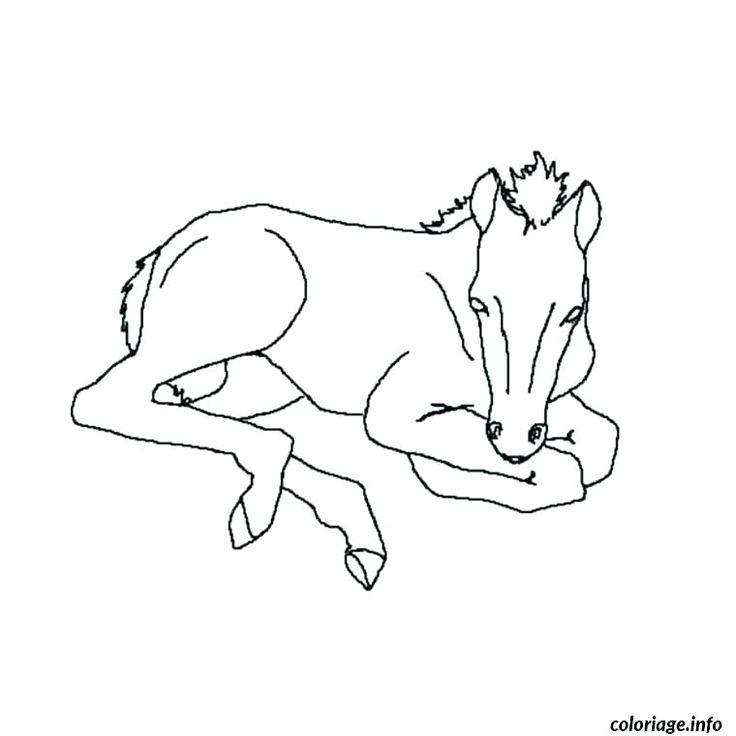coloriage cheval sauvage coloriage cheval sauvage coloriage cheval dans son box dessin a ...