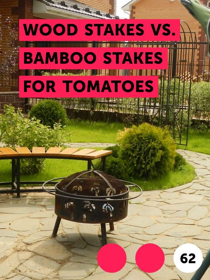Wood Stakes Vs Bamboo Stakes For Tomatoes Plants 640 x 480