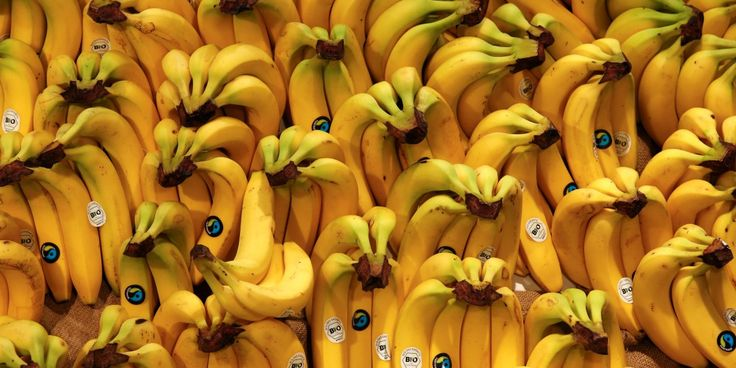The DNA of the Cavendish banana could be genetically engineered to resist Panama Disease.