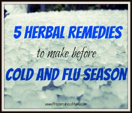 5 Herbal Remedies to Make Before Cold Season | PreparednessMama