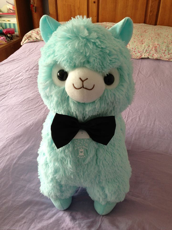 ❤ Blippo.com Kawaii Shop ❤ stuffy teal alpaca!  CHECKED OFF <3 THANKS JESSICA AND PRISCILLA <3