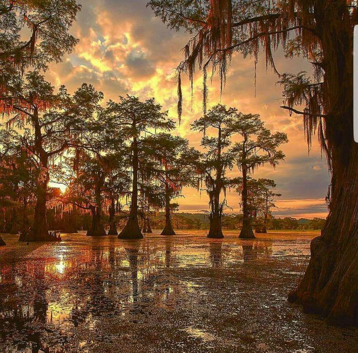 Gorgeous Louisiana 1163 best Louisiana images on